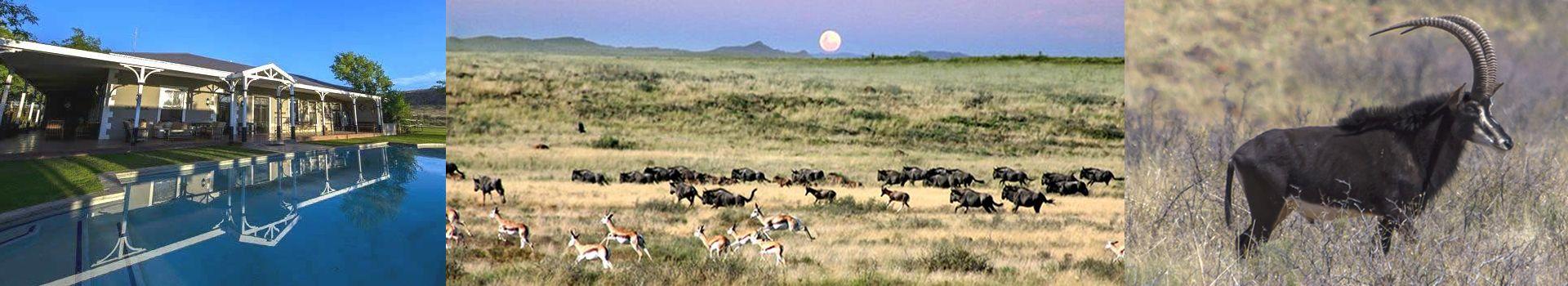 Karoo Hunting Lodge
