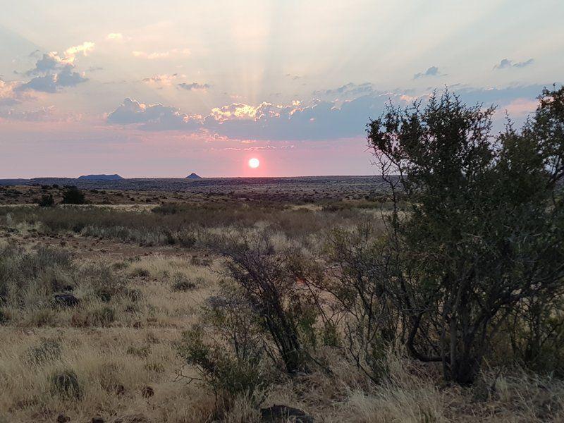 mus_sunset.jpg